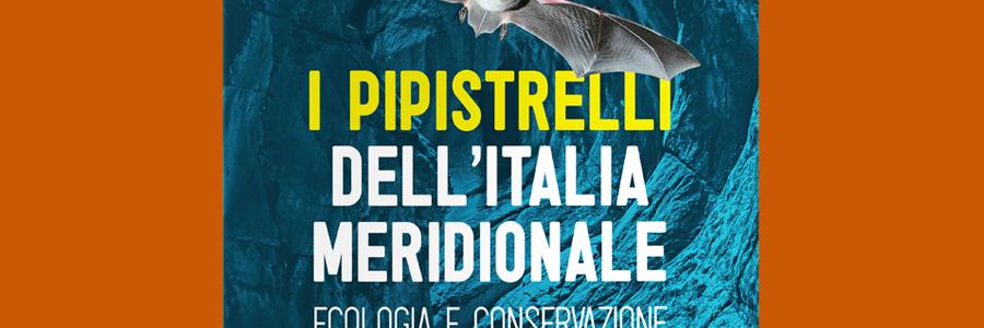 pipistrelli_webmockup